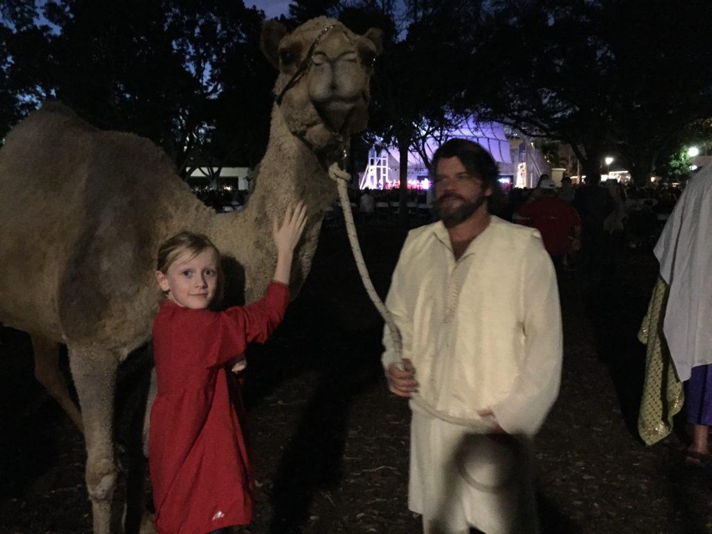 Fay and camel