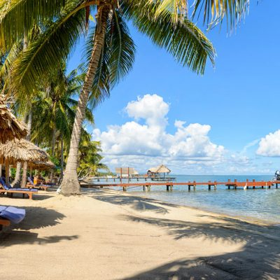 Palm trees on Belize beach