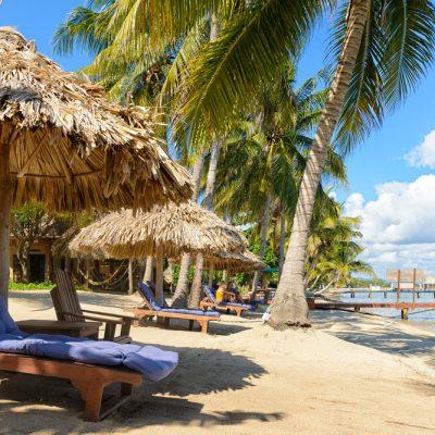 Three palm umbrellas on beach
