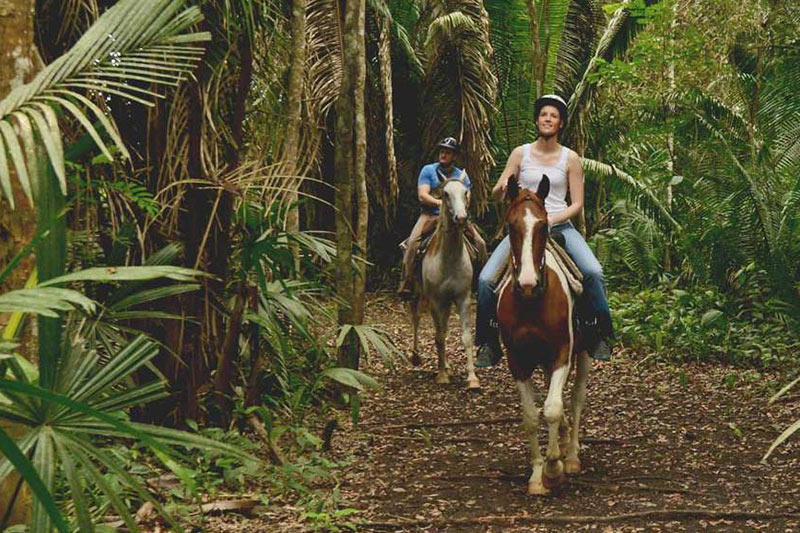 Belize jungle horseback